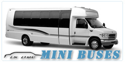 Mini Bus rental in Tampa, FL