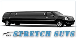 Tampa wedding limo
