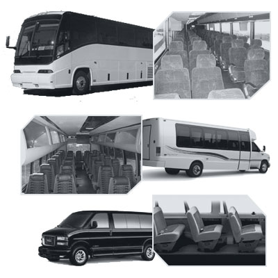 Tampa Coach Bus rental