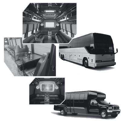 Party Bus rental and Limobus rental in Tampa, FL