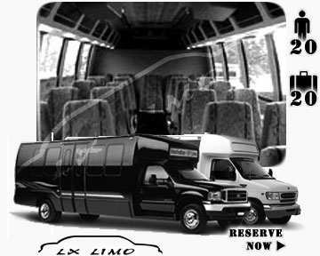 Tampa Mini bus for hire in Ontario